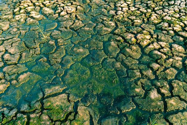 Rachadura seca terra e conceito de crise ambiental.