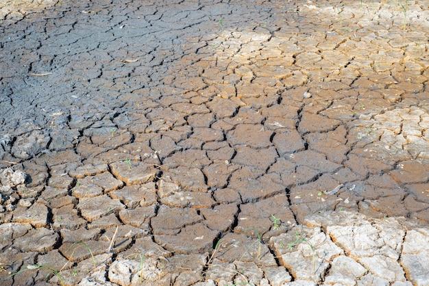 Rachaduras no solo seco na estação árida