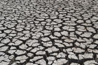 Rachaduras seca