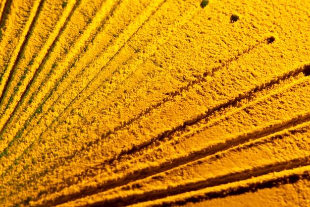 Raios de sol abstratos feitos de areia