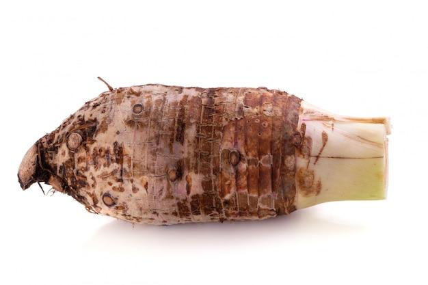 Raiz de taro isolada em um fundo branco.