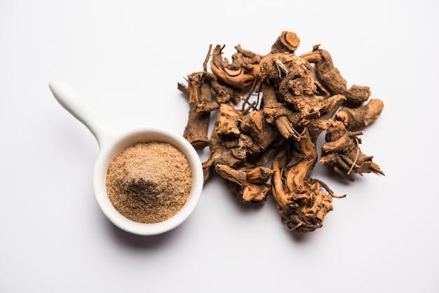 Raízes ayurvédicas chitrak ou sheetraj, também conhecidas como plumbago zeylanica