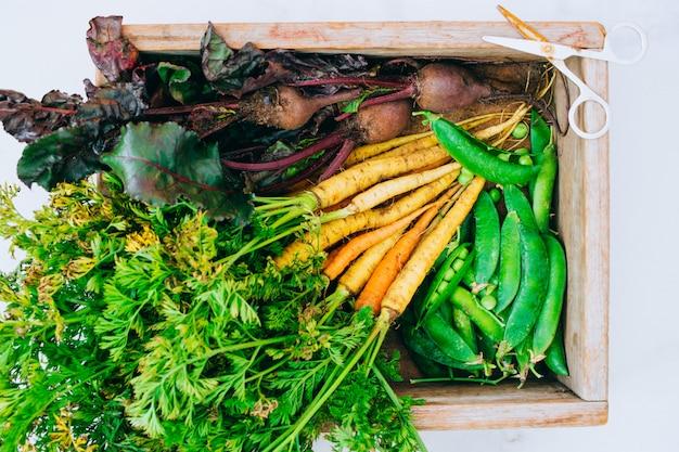 Raízes frescas sujas legumes cenouras e beterrabas em caixa de madeira em fundo de mármore