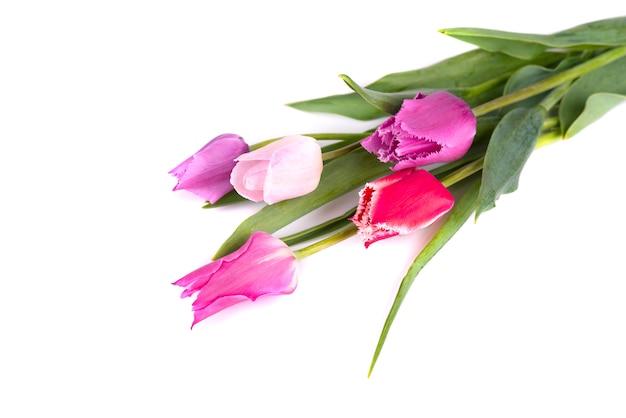 Ramalhete das tulipas coloridas isoladas no espaço em branco. buquê de primavera.