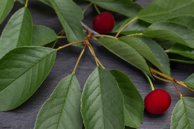 Raminho de cerejas com folhas. fechar-se. fundo de madeira.