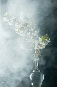 Raminho de flores de cerejeira em gotas de água e fumaça no preto