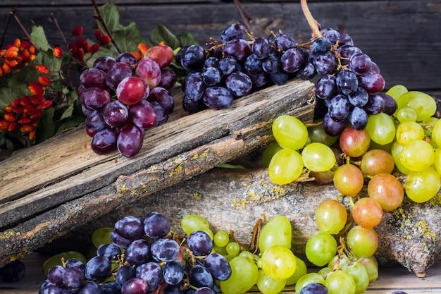 Raminho de uvas em fundo de madeira