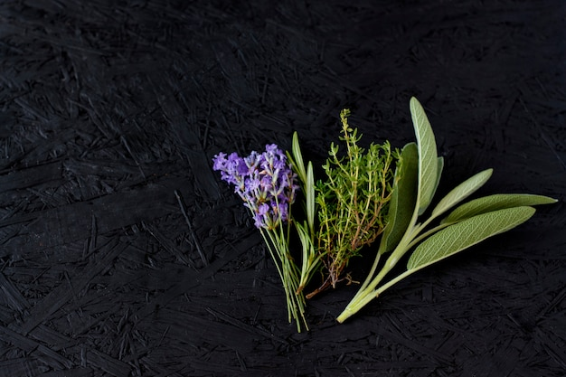 Raminhos de alecrim, lavanda, tomilho e sálvia em um fundo escuro. ervas provençais. especiarias vegetação