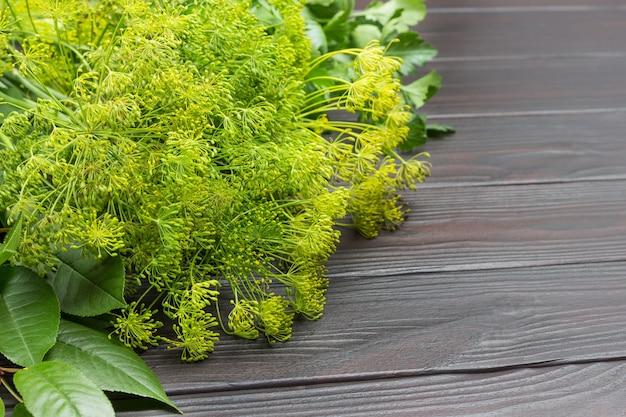Raminhos de endro com sementes. folhas de cerejeira e salsa. verduras como tempero para fermentar vegetais