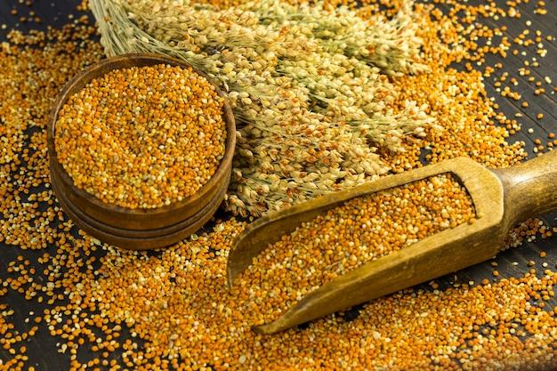 Raminhos de painço e grãos