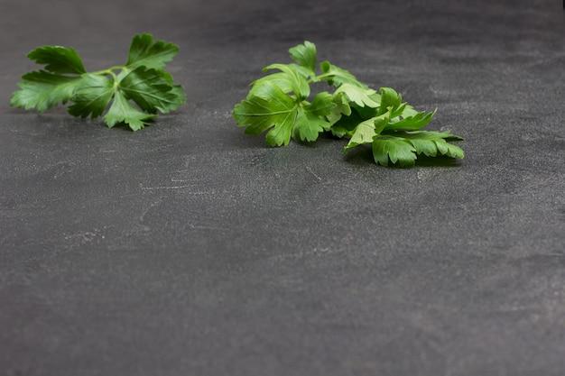 Raminhos de salsa no preto. fundo vegetal. copie o espaço. vista do topo.