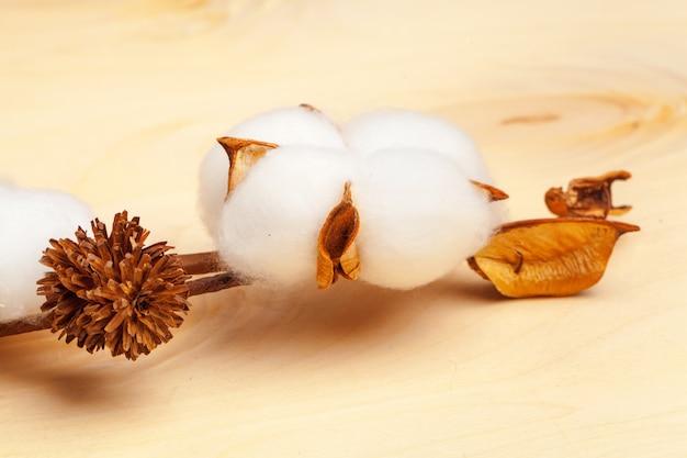 Ramo com flores de algodão no fundo de madeira