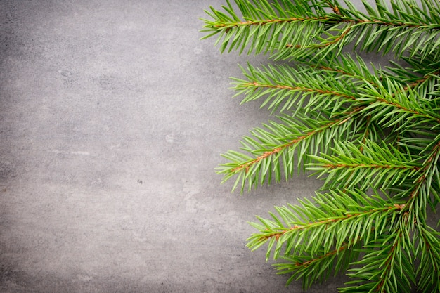 Ramo de abeto com decorações de natal em um fundo cinza.