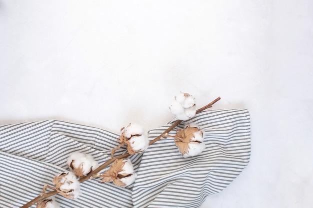 Ramo de algodão seco no guardanapo listrado amassado