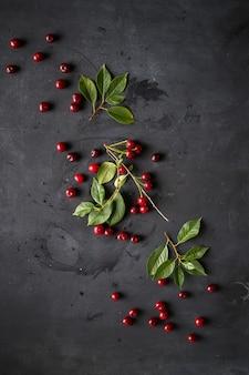 Ramo de bagas de cereja cruas com folhas verdes