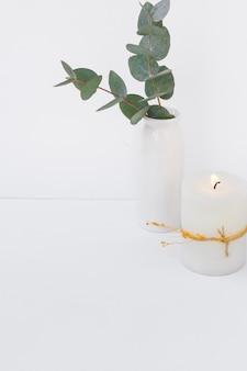 Ramo de eucalipto em vaso cerâmico, vela acesa no fundo branco