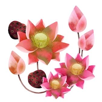 Ramo de flor de lótus