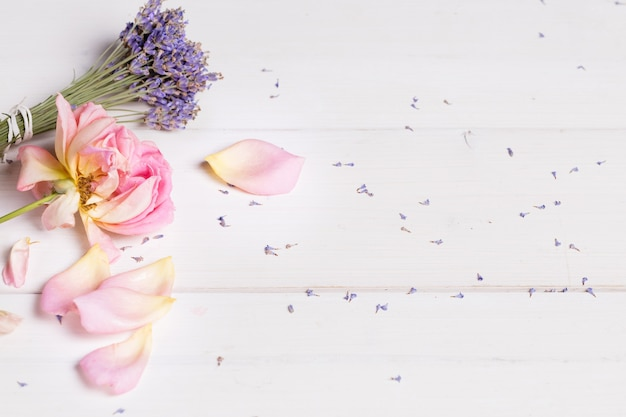 Ramo de flores de lavanda e banner rosa rosa, conceito de spa, tratamento de beleza