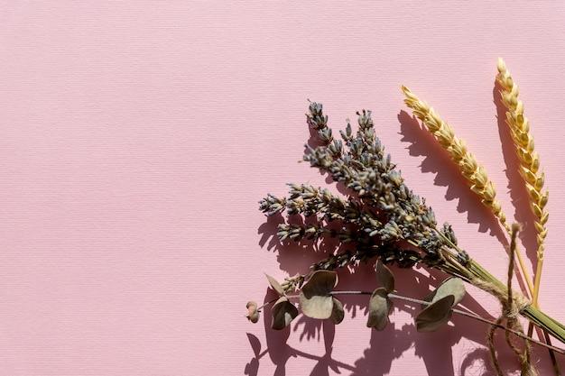 Ramo de flores de lavanda, violeta lavanda dispostas na parede rosa. vista superior, plana leigos. conceito mínimo. flores secas, espaço de cópia de composição floral de plantas. pastel lindo romance arte cores.