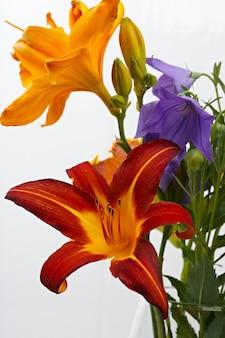 Ramo de flores de verão para o fundo
