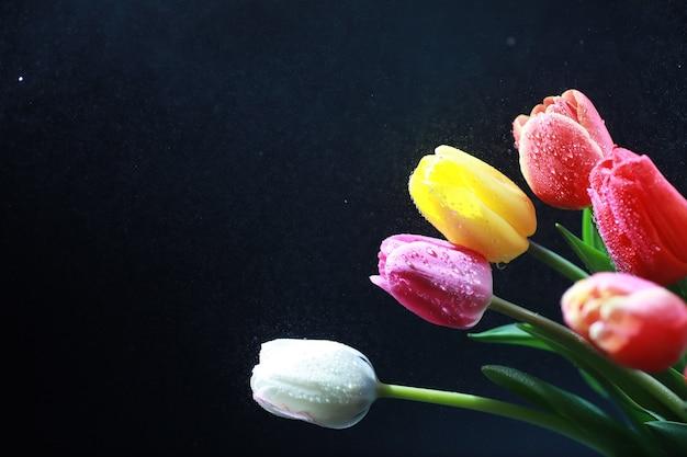 Ramo de flores frescas. presente de feriado para seu ente querido. dia de são valentim de fundo. arranjo de flores de rosa, tulipa, íris.