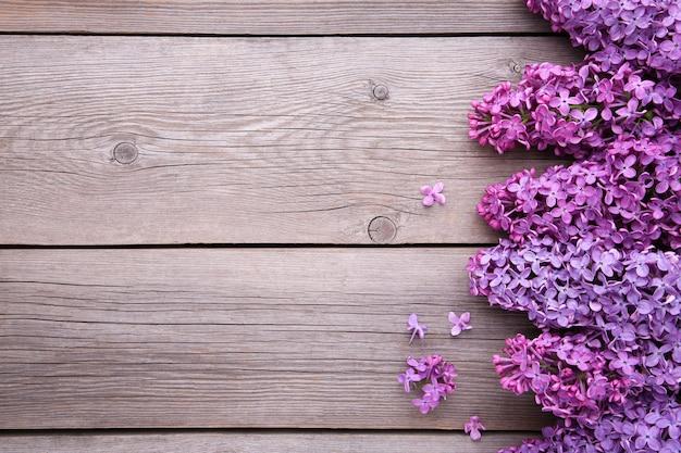 Ramo de flores lilás em fundo cinza com copyspace