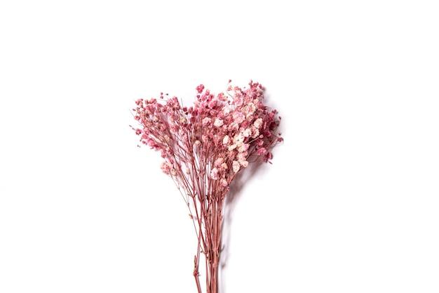 Ramo de flores rosa em fundo branco