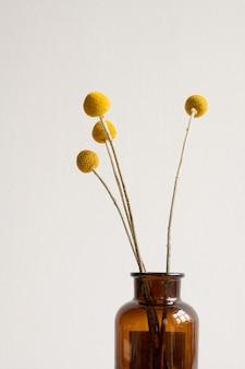 Ramo de flores silvestres secas e amarelas em hastes compridas em um frasco escuro ou vaso na parede branca