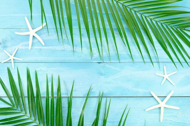 Ramo de folha de palmeira tropical e estrelas do mar