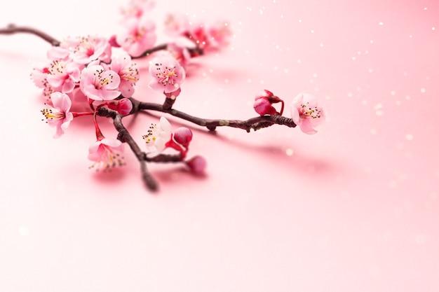 Ramo de sakura em rosa