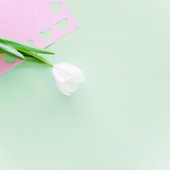Ramo de tulipa branca com corações cortadas em papel rosa