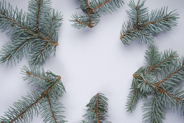 Ramos de abeto vermelho azul, cinza claro de natal, planos deitar com copyspace.