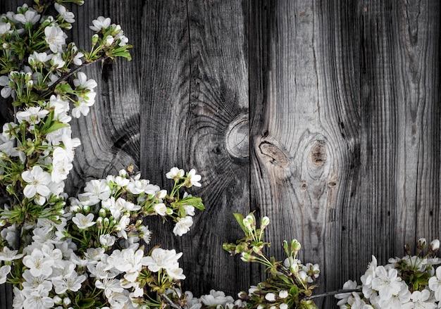 Ramos de cereja com flores brancas
