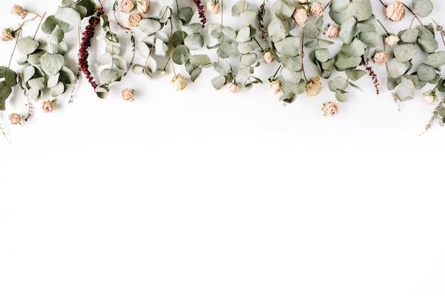 Ramos de eucalipto e botões de rosa cor de rosa em fundo branco.