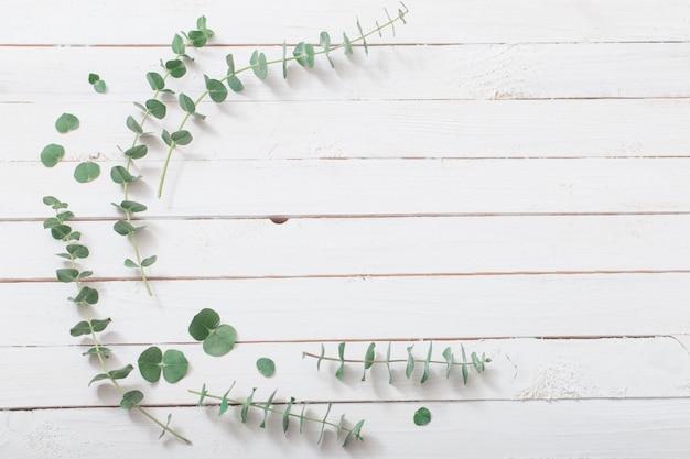 Ramos de eucalipto em fundo branco de madeira