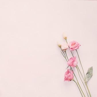 Ramos de flores brilhantes diferentes na tabela