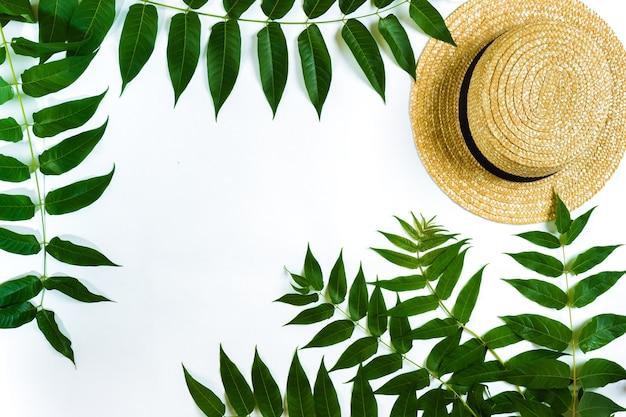 Ramos de folhas verdes e palha haton fundo branco vista de cima plana