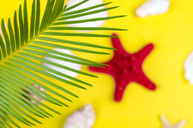Ramos de palmeiras de fundo tropical com estrelas do mar desfocadas em fundo amarelo