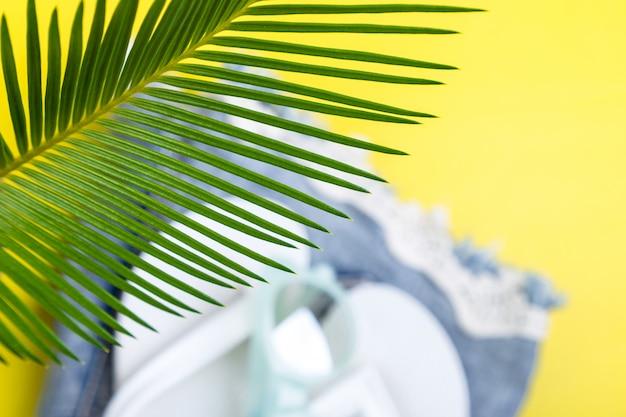 Ramos de palmeiras de fundo tropical com turva conjunto de acessórios de coisas de mulher para temporada de praia.