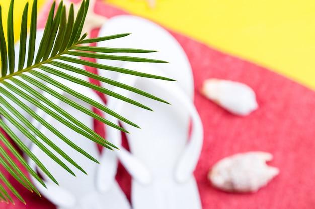 Ramos de palmeiras tropicais com conjunto borrado de acessórios de coisas de mulher para temporada de praia.