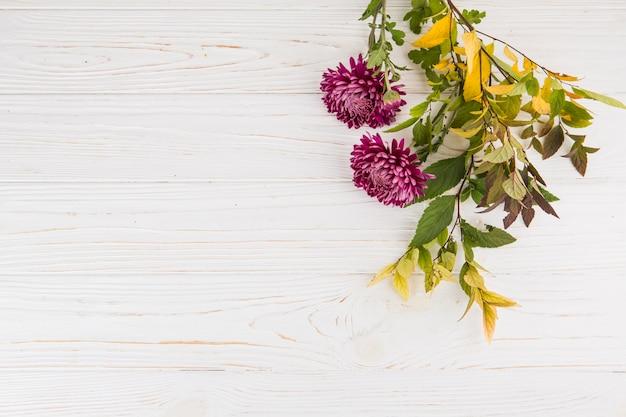 Ramos de plantas com flores roxas na mesa