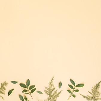Ramos de plantas verdes na mesa amarela