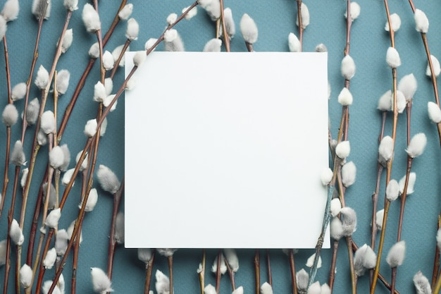 Ramos de salgueiro e cartão em branco.