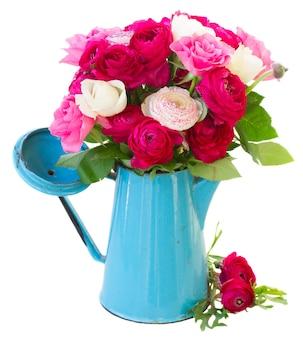 Ranúnculo rosa e flores rosas em vaso azul isolado no branco