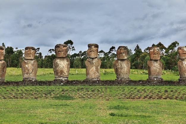 Rapa nui. a estátua moai em ahu akivi na ilha de páscoa, chile