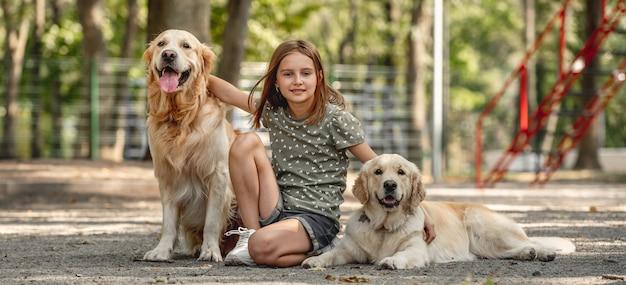 Rapariga com cães golden retriever