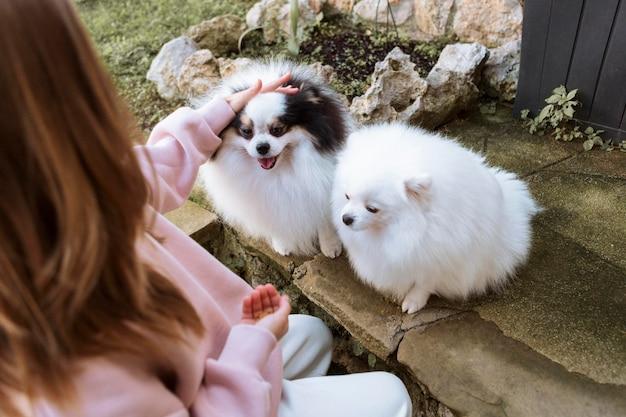 Rapariga e cachorrinhos brancos fofos vista alta