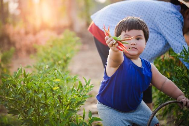 Rapaz asiático é agricultura