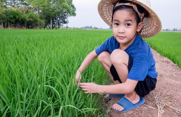 Rapaz asiático usar chapéu de bambu, jogando como agricultor plantar arroz no campo de arroz