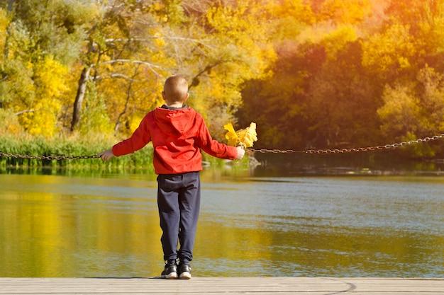 Rapaz com uma jaqueta vermelha em pé no banco dos réus. folhas na mão. outono, ensolarado. vista traseira